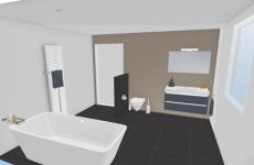 Saninet badkamer